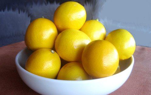 bowl-of-lemons-765902