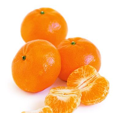 ING-tangerine_sql